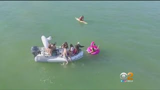 Download Boat Pulling People In Water Toys Comes Dangerously Close To Sharks Video