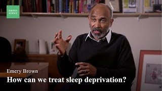 Download The Difference Between Sleep and Anesthesia - Emery Brown Video