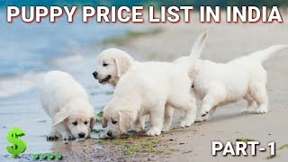Download Dog Price List In India   in Hindi   part-1  dog price list Video