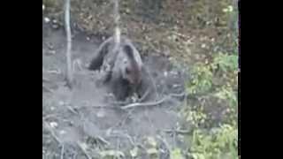 Download Mecka Demir Hisar (Sopotnica) Part 1+2 [FULL VIDEO] Video