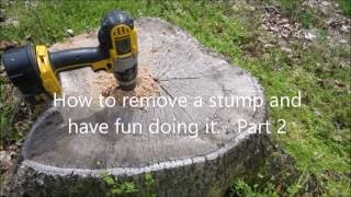Download Easy Way to Remove Tree Stumps - Part 2 Video