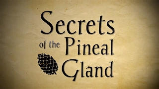 Download The secrets of the pineal gland - Full Video