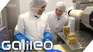 Download Selbstversuch: Der harte Job als Food-To-Go-Produzent | Galileo | ProSieben Video