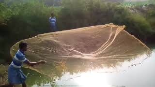Download Fish culture in India Video