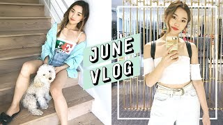 Download Moving Into Our New Home + Tokyo Trip | June Vlog Video