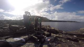 Download Ireland Field Ecology Course 2015 Video