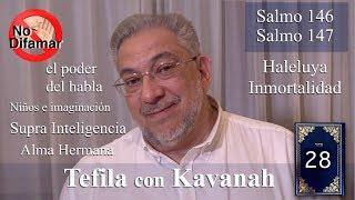 Download Kabbalah: la Tefila con Kavanah - clase 28 Salmos 146 y 147 Video