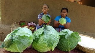 Download Cabbage Rice prepared by Grandma and Daughter ❤ Village Life Video
