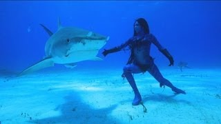 Download Performance Artist Hannah Fraser, 'Mermaid', Dances with Sharks | Nightline | ABC News Video