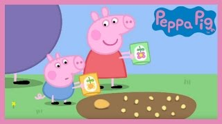 Download Peppa Pig - Peppa and George's Garden (Full Episode) Video