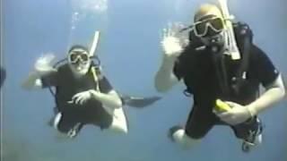 Download Great Barrier Reef Dive Video