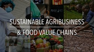 Download FAO Policy Series: Sustainable Agribusiness & Food Value Chains Video