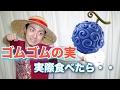 Download 【ワンピース】ゴムゴムの実を実際食べたら大変なことになる! Video