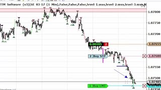 Download Live Day Trading Euro Currency 1-24-2017 Video
