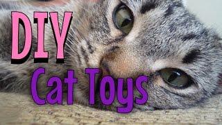 Download DIY Cat Toys Video
