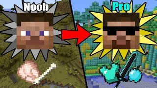 Download Ultimate&Easy Ways to Transform from NOOB to PRO in Minecraft Video