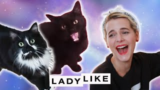 Download Devin Meets A Pet Psychic • Ladylike Video