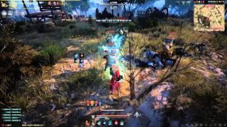 Download Black Desert Online High Level Witch Gameplay Video