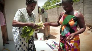 Download Sustainable Energy African Women Turn Manure Into Opportunity Video