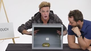 Download Cameron Dallas Touches a Frog, a Dead Octopus & Other Weird Stuff | Vanity Fair Video