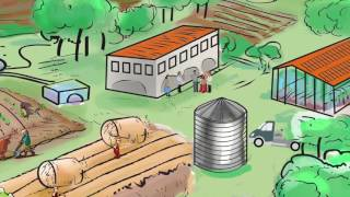 Download Improved rural urban linkages: Building sustainable food systems Video