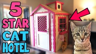 Download CHIBI GOES TO 5 STAR CAT HOTEL!!! Video