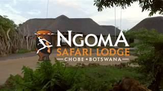 Download Chobe, Botswana- Ngoma Safari Lodge Video