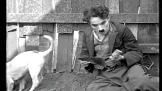 Download 1918 - Charlie Chaplin - A Dog's Life-3.avi Video