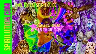 Download ★Owl Totem : Owl Spirit Guide Connection Formula★ (Brainwave Entrainment Binaural Beats Meditation) Video