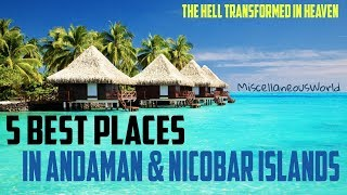 Download 5 Best Places To Visit In Andaman and Nicobar Islands | Miscellaneous World | Video