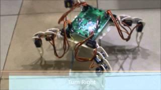 Download Quadruped Robot Video