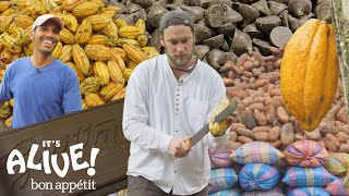 Download Brad Makes Chocolate in Ecuador: Part 1 | It's Alive | Bon Appétit Video