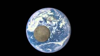 Download EPIC View of Moon Transiting the Earth Video