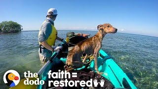 Download Dog on Remote Island Near Belize is Rescued and Brought Home | The Dodo Faith = Restored Video