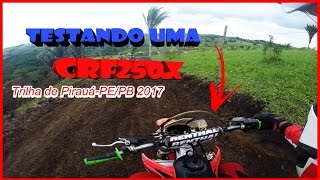 Download Trilha de Pirauá 2017 / 5ª Etapa do Circuito Pernambucano / Teste na CRF250x Video
