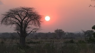 Download Documentaire Malawi Jan Arentsz 2016 Video