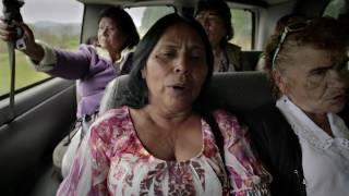 Download Plaza de la soledad Video