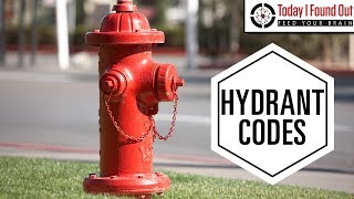 Download Fire Hydrant Colors Actually Mean Something Video