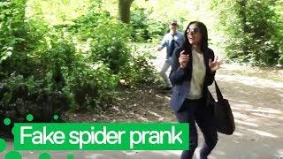Download Hilarious Fake Spider Prank Caught on Camera Video