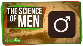 Download The Science of Men Video
