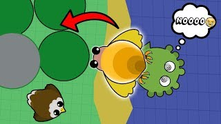 Download SNAIL TURNS INTO EAGLE GLITCH!? SNAIL TROLLING ALL ANIMALS IN MOPE.IO! (Mope.io Funny Moments) Video