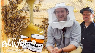 Download Brad Makes Honey | It's Alive | Bon Appétit Video
