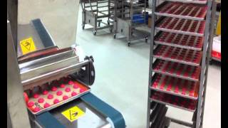 Download W & P Reedy / Mimac Suprema Biscuit Machine - Macarons Video