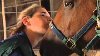 Download Vet Students in the Real World Video