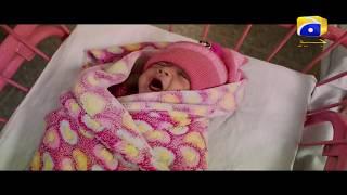 Download Saaya - Episode 01 Best Scenes 03 | Har Pal Geo Video