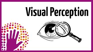 Download Visual Perception – How It Works Video