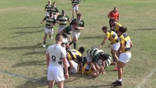 Download USF Men's Rugby vs FIU - 11/12/2016 Video