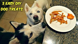 Download 3 Easy DIY Treats for Your Dog Video