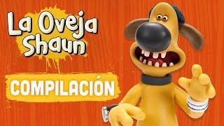 Download Compilación Temporada 4 (episodios 1-5) - La Oveja Shaun Video