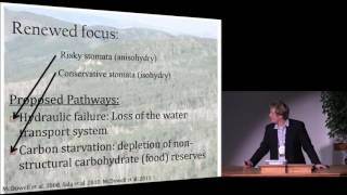 Download Drought-driven Tree Mortality and Climate Change: What Have We Learned so Far? Video